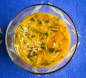 Sopa de tallarines del pollo en un tazón de fuente Imagenes de archivo
