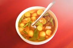 Sopa de Tom Yum imagen de archivo