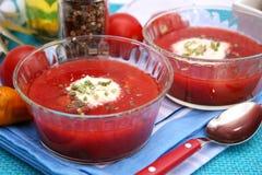 Sopa de tomates Imagen de archivo libre de regalías