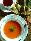 Sopa de Tomatoe na bacia imagem de stock