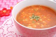 Sopa de vegetais Imagem de Stock Royalty Free