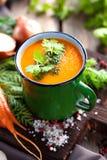 Sopa de vegetais Fotografia de Stock