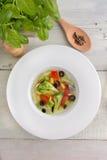 Sopa de vegetais do vegetariano Imagens de Stock Royalty Free