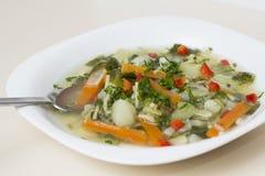 Sopa de verduras Imágenes de archivo libres de regalías