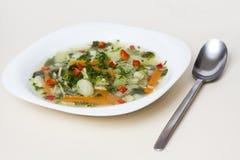 Sopa de verduras Foto de archivo libre de regalías