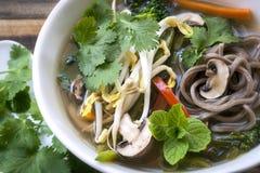 Sopa de verduras caliente y amarga con los tallarines y Bean Sprouts de Soba Fotografía de archivo libre de regalías