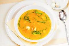 Sopa de verduras con el huevo y el espárrago de codornices Imagen de archivo
