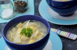Sopa de verduras con hinojo, ajo, la cebolla y las patatas Imagen de archivo libre de regalías