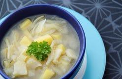 Sopa de verduras con hinojo, ajo, la cebolla y las patatas Fotos de archivo libres de regalías