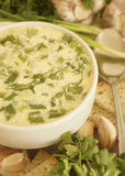 Sopa de verduras con la acción de la mayonesa. Fotografía de archivo