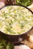 Sopa de verduras con la acción de la mayonesa. Fotos de archivo