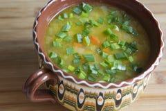 Sopa de verduras con la cebolla verde en un cuenco de la arcilla Fotos de archivo libres de regalías