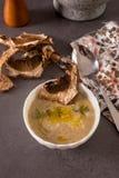 Sopa de verduras con los champiñones secados en una tabla Fotos de archivo libres de regalías
