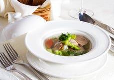 Sopa de verduras con los pedazos de carne fotografía de archivo libre de regalías