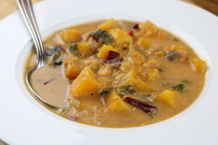 Sopa de verduras del Caribe Imagen de archivo libre de regalías