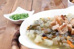 Sopa de verduras fresca caliente de la dieta Imagen de archivo