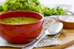 Sopa de verduras sana Fotografía de archivo libre de regalías