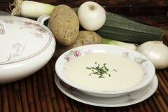 Sopa de Vichyssoise Foto de Stock Royalty Free