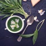 Sopa del ajo salvaje con parmesano imagen de archivo