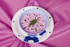 Sopa del frío de las remolachas Foto de archivo libre de regalías