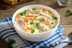 Sopa del pollo y del arroz salvaje Foto de archivo libre de regalías