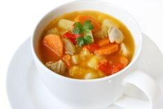 Sopa del pollo y vegetal Imagen de archivo libre de regalías
