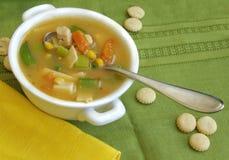 Sopa del pollo y vegetal imagenes de archivo