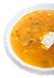 Sopa del primer de la col con crema amarga Imagen de archivo libre de regalías
