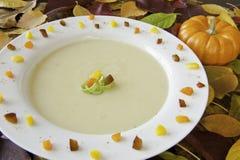 Sopa del puerro de la patata de la acción de gracias Fotos de archivo