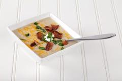 Sopa del puerro de la patata en blanco foto de archivo libre de regalías