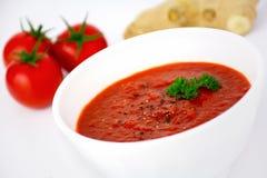 Sopa del tomate con el jengibre adornado con perejil Foto de archivo libre de regalías