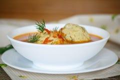 Sopa del tomate con las albóndigas Imagen de archivo libre de regalías