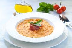 Sopa del tomate con pan, ajo, aceite, sal y pimienta fotografía de archivo