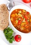 Sopa del tomate de la carne picadita y del vehículo Imagen de archivo libre de regalías