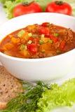 Sopa del tomate de la carne picadita y del vehículo Fotos de archivo
