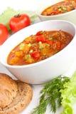 Sopa del tomate de la carne picadita y del vehículo Fotos de archivo libres de regalías