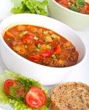 Sopa del tomate de la carne picadita y del vehículo Foto de archivo