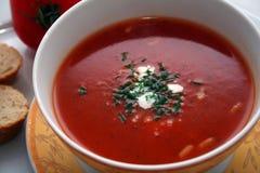 Sopa deliciosa Fotografía de archivo libre de regalías