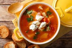 Sopa deliciosa com tomates, aipo do búfalo da galinha, cenouras Imagem de Stock