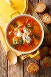 Sopa deliciosa con los tomates, apio, zanahorias del búfalo del pollo Fotos de archivo