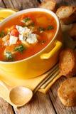 Sopa deliciosa con los tomates, apio, zanahorias del búfalo del pollo Imagenes de archivo