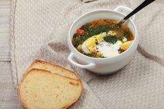 Sopa dietética fresca da provocação Fotos de Stock