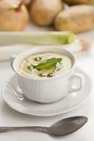 Sopa do alho-porro Imagem de Stock