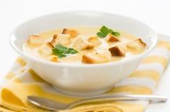 Sopa do alho-porro, da batata e do aipo Foto de Stock