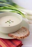 Sopa do alho-porro e de batata em uma bacia foto de stock royalty free