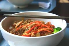 Sopa do arroz de Japão com carne de porco foto de stock