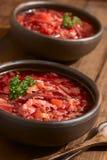 Sopa do Borscht do vegetariano Fotos de Stock Royalty Free