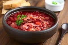 Sopa do Borscht do vegetariano Foto de Stock