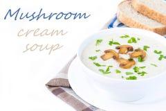 Sopa do creme do queijo macio com cogumelos e vegetais Fotografia de Stock