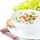 Sopa do creme do queijo macio com cogumelos, salsa e vegetais Imagens de Stock